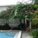 艾爾派提奧汽車旅館(El Patio Motel)