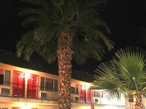 沙姆洛奇酒店(Desert Lodge)