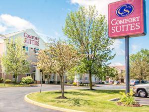 羅切斯特舒適套房酒店(Comfort Suites Rochester)