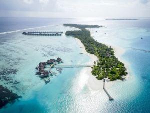 馬爾代夫尼亞瑪島度假酒店(PER AQUUM Niyama Maldives)