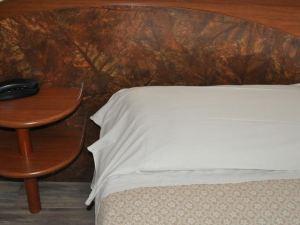 塞西爾酒店(Hotel Cecile)