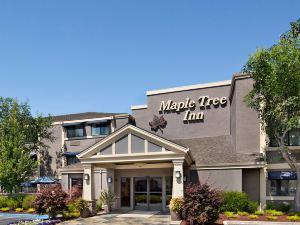 美圖酒店(Maple Tree Inn Hotel)