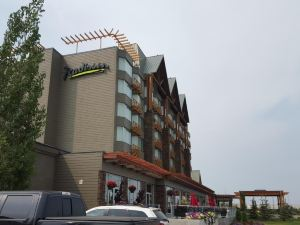 埃德蒙頓麗笙會議中心酒店(Radisson Hotel and Convention Center Edmonton)
