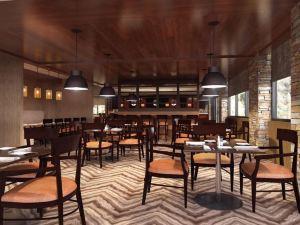 澤西市希爾頓逸林套房酒店(DoubleTree by Hilton Hotel & Suites Jersey City)