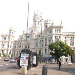 Plaza de Cibeles User Photo