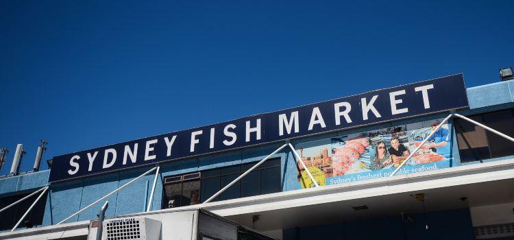 Sydney Fish Market2