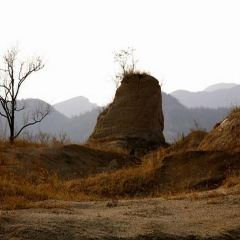 西部戈壁公園用戶圖片