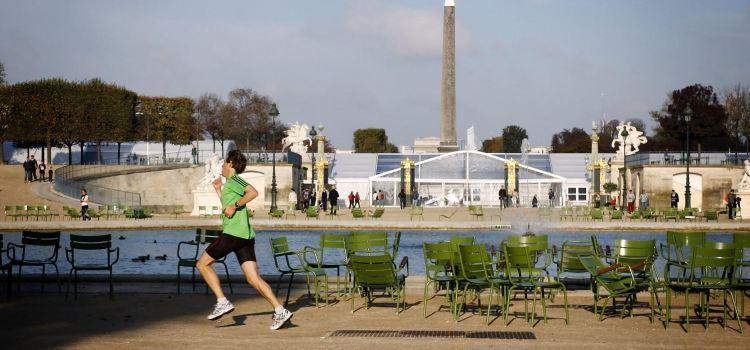 Tuileries Garden3