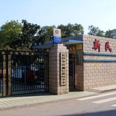 Xinmin Organization site User Photo