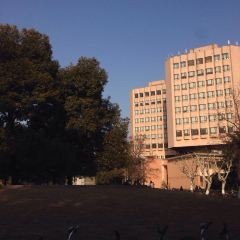 Tongji University User Photo