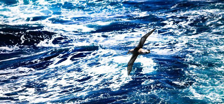 Drake Passage2