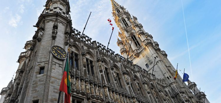 City Hall of Brussels2