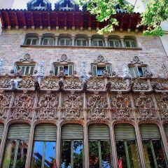 Museu Pau Casals User Photo