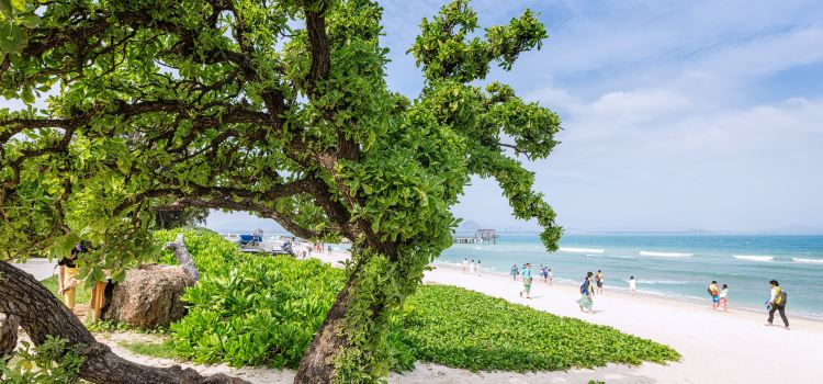 Wuzhizhou Island2