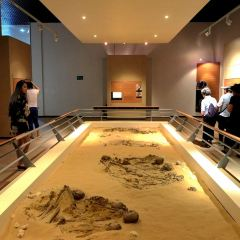 Sharjah Archaeological Museum User Photo