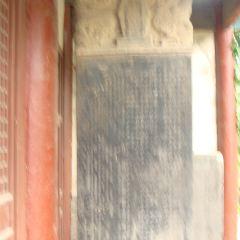 凈因寺用戶圖片