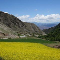 칸불라 국가삼림공원 여행 사진