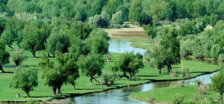 烏倫古湖1