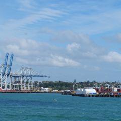 Waitemata Harbour User Photo