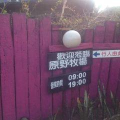 七星潭原野牧場用戶圖片