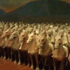 셴양 박물관 여행 사진