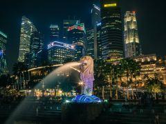 体验狮城异域文化,新加坡紧凑1日游