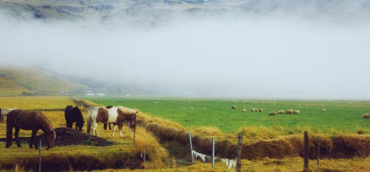 冰島南部區