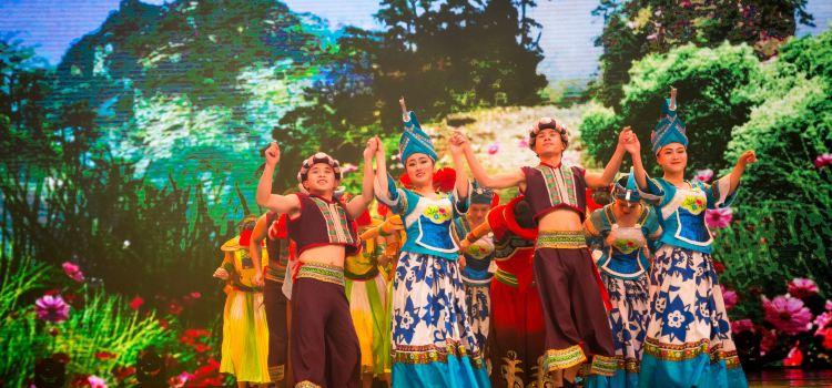 Colorful Guizhou Style Performance