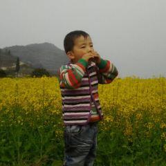 青山用戶圖片