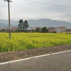 Shili Blue Mountain Dream Valley User Photo