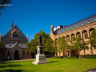 南澳大利亞博物館