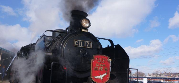 Kushiro Shitsugen Norokko Train2