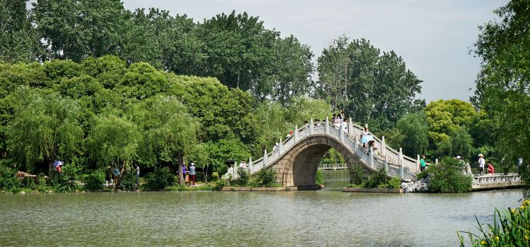 Twenty-four Bridge