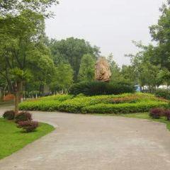 狀元洲公園用戶圖片