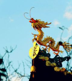 依兰游记图文-魂之所依,情之所系--东北抗联之乡依兰两日游