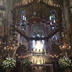 馬略卡島帕爾馬大教堂用戶圖片