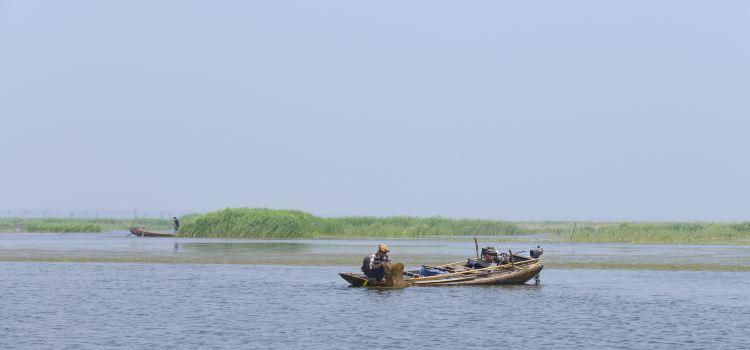 Baiyang Lake1