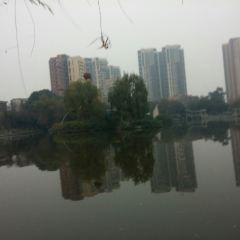 怡湖公園用戶圖片