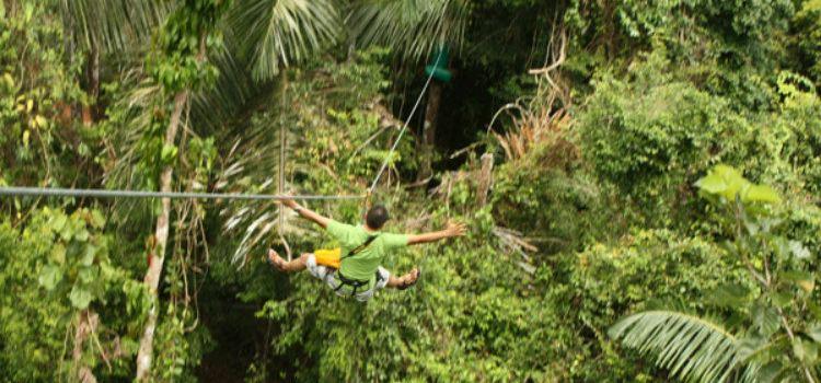 Tree Top Adventure Park Jungle leap