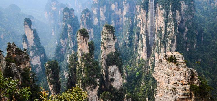 張家界国家森林公園1