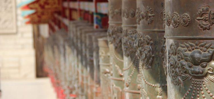 Kumbum Monastery3