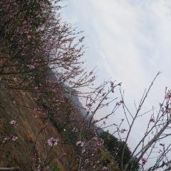 汕頭蓮花山溫泉度假村用戶圖片