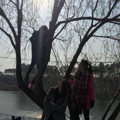 青龍山熊河風景區用戶圖片