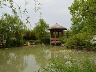 孔雀東南飛景區