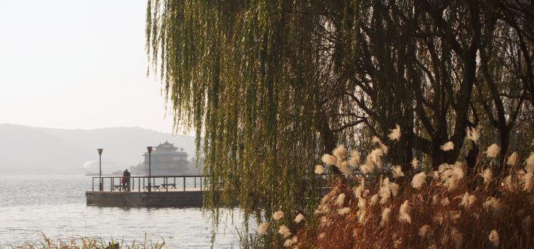 리후 공원1