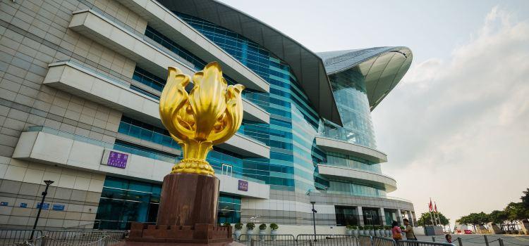 Golden Bauhinia Square2