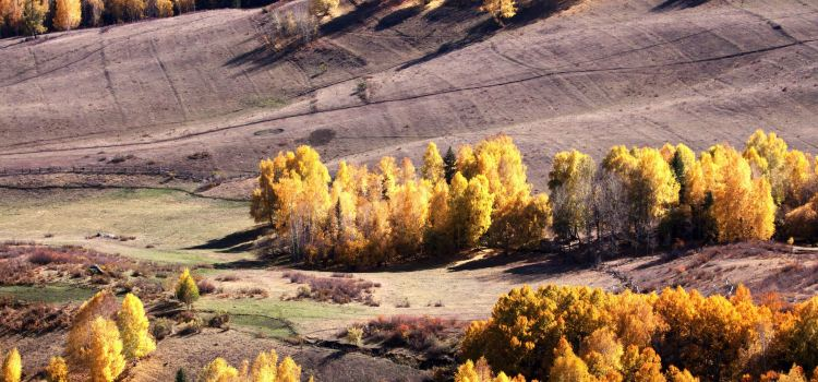 禾木風景區2