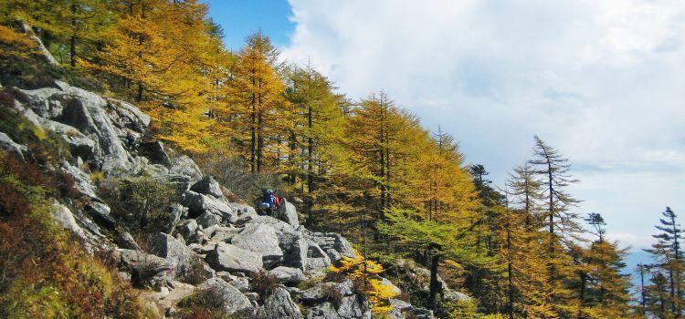 太白山國家森林公園1