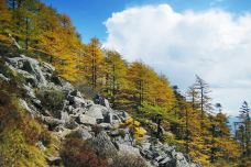 太白山国家森林公园-眉县-doris圈圈