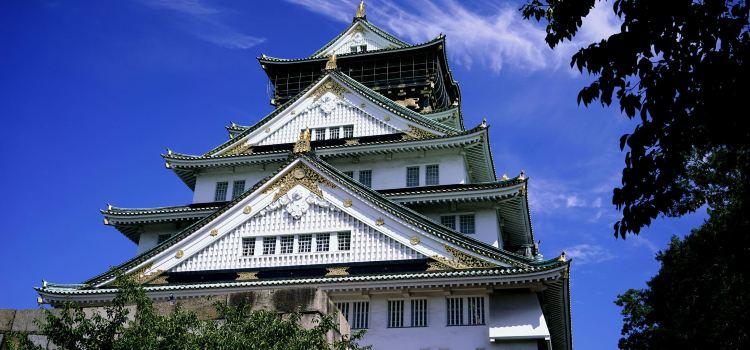 The Main Tower of Osaka Castle3